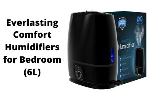 Everlasting Humidifiers
